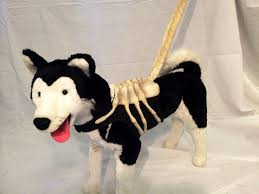 the grudge costume for halloween 8 dogs dressed as your favorite horror movie characters bloody