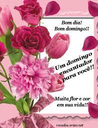imagenes de amor para el domingo português um domingo encantador para você oriza net portal