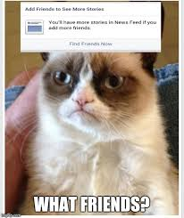 No Meme Grumpy Cat - grumpy cat no friends memes imgflip
