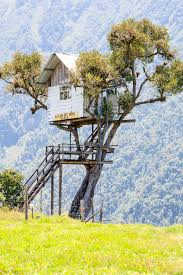famous tree houses famous swing at the end of the world stock image image of play