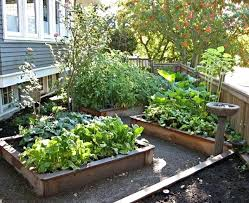 Vegetable Garden Landscaping Ideas Vegetable Garden Landscaping Ideas Large Size Of Backyard