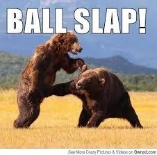 Bear Meme - pics for funny bear memes big bear lake pinterest funny