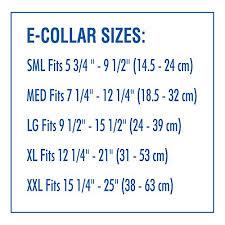 australian shepherd neck size amazon com remedy recovery e collar large neck size 91 2