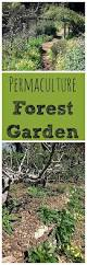 weeding wild suburbia all about best 25 what is homestead ideas on pinterest what is farming