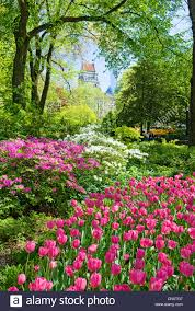 central park new york city in spring season stock photo royalty