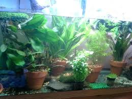 Indoor Herb Garden Light Small Indoor Garden U2013 Exhort Me