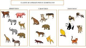 imagenes de animales carnivoros para imprimir webquest creator 2