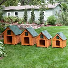 a frame house boomer u0026 george t bone a frame dog house hayneedle