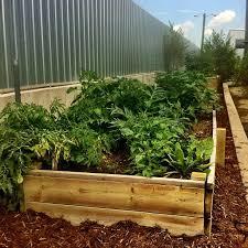 Urban Garden Denver - report your garden as full denver urban gardens