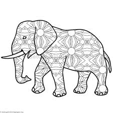 collection solutions elephant coloring sheet 2017