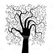 Oak Tree Drawing Creativity Human Hand Tree Drawing On White Stock Vector Art