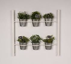 Hanging Wall Planters Amazon Com Groves Indoor Herb Garden Hanging 6 Pot Wall Planter
