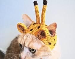 Cat Halloween Costumes Cats Frog Costume Cats Hand Knit Cat Hat Cat Halloween