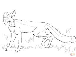 kit fox coloring page free printable coloring pages kit fox