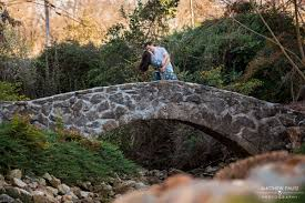Rock Quarry Garden Falls Park Engagement Photos Downtown Greenville Engagement