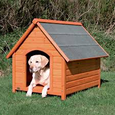 lowe s home plans pets lowes dog houses dog house kits at lowes weatherproof