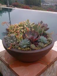 large succulent planters centerpiece ideas for dining room table