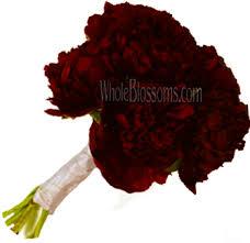 wholesale flowers near me peonies wedding flowers buy wholesale peonies in bulk pink