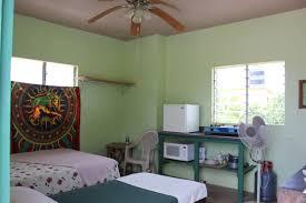 viking u0027s rasta retreats u2014 accommodation in a jamaican home in