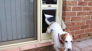 Patio Door Cat Flap by Pet Door Insert For Sliding Door Product Information By Patio