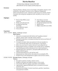 Service Industry Resume Examples by Food Industry Resume 10 Waitress Career Objective Examples Job