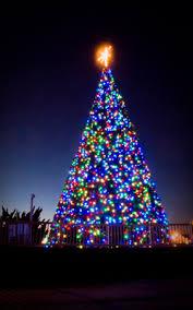 christmas tree lights deals holiday lights at the beach vbgov com city of virginia beach