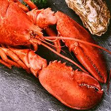 cuisiner un homard cuisiner le homard en toute simplicité metro