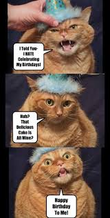 lolcats birthday lol at funny cat memes funny cat pictures