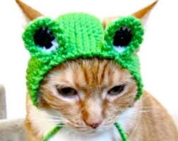 Halloween Costume Cat Carrot Costume Cats Hand Knit Cat Hat Cat Halloween
