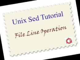 Count No Of Words In Unix Unix Sed Tutorial Append Insert Replace And Count File Lines
