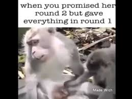 Sexy Monkey Meme - when your girl wants sexy time round 2 funny youtube