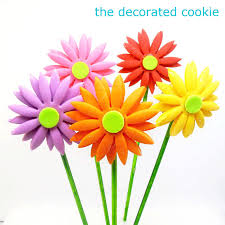 gerbera colors fondant gerbera cookie pops the decorated cookie