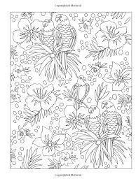 590 best birds images on pinterest coloring books draw and mandalas