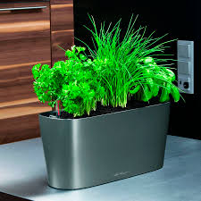 Self Watering Indoor Planters by Lechuza White All In One Delta Self Watering Windowsill Planter