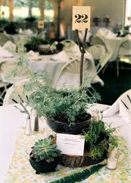 Potted Plants Wedding Centerpieces by Wedwed Potted Plant Centerpieces Music U003d Art