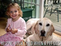 when a pet dies helping your child when a pet dies bright horizons
