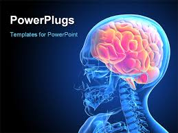 free brain powerpoint template science powerpoint themes science