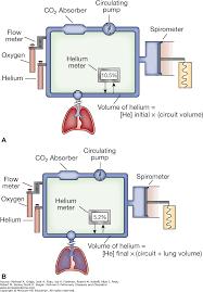 pulmonary function testing fishman u0027s pulmonary diseases and