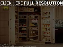 Corner Kitchen Pantry Cabinet by Fancy Kitchen Pantry Cabinet U2013 Interiorvues