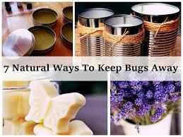 13 natural ways to keep mosquitoes away