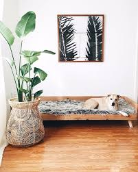 Living Room Ideas KidFriendly And PetFriendly Inspiration - Family friendly living room