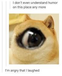 Make Doge Meme - the things that make me laugh on tumblr doge tumblr quotes