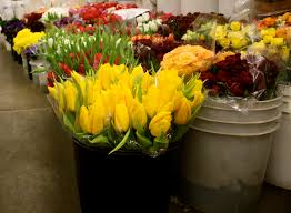 fresh flowers in bulk blogs l a flower market sells fresh flowers at wholesale price
