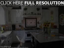 kitchen cabinets orange county kitchens design