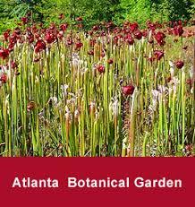 Botanical Gardens In Atlanta Ga by Atlanta Botanical Garden In Atlanta Georgia