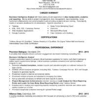 Resume Samples For Data Analyst by Simple Career Summary Plus Alliance Data Data Analyst Resume