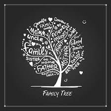 family tree sketch for your design royalty free cliparts vectors