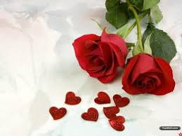 valentines day roses 25 free happy valentines day hd wallpapers for your