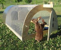 Ferret Hutches And Runs Pin By Annette Thornquest On Bunny Hollow Pinterest Rabbit