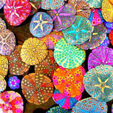 25 unique painted sand dollars ideas on pinterest sand dollars